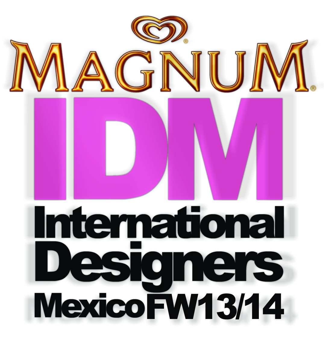 logo idm fw1314 2
